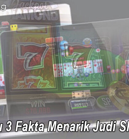Slot - Cari Tahu 3 Fakta Menarik Judi Slot Online - Tokyoing